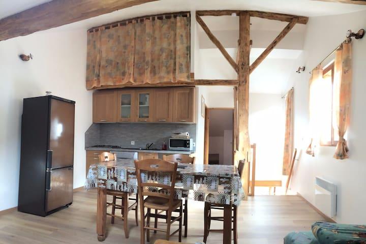 Gite montagnard 3 étoiles, Les Cabannes, Ariège - Les Cabannes - Appartement
