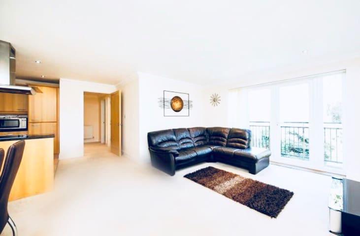 Luxury Apartment in Twickenham
