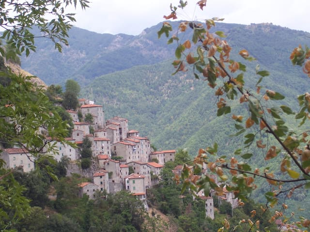 "Casa di Montagna in Toscana ""Il Gelso"""