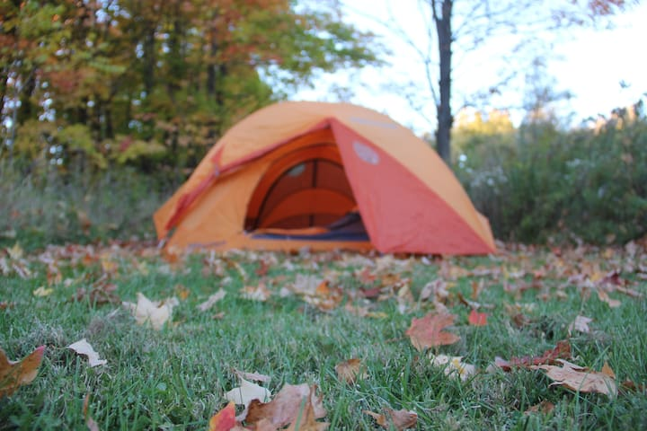 CAMPING @ STONE BEND FARM [breakfast & amenities] - Newfield - Tent