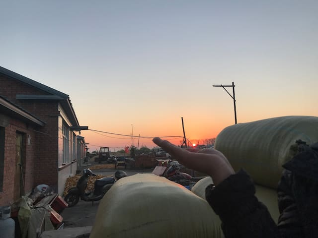 每天都有泰山日出