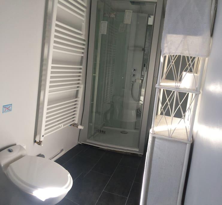 salle de bain privative de la chambre 1 . Douche et wc .