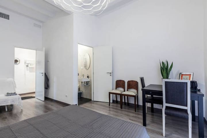BIG ROOM WITH PRIVATE BATHROOM - Barcelona