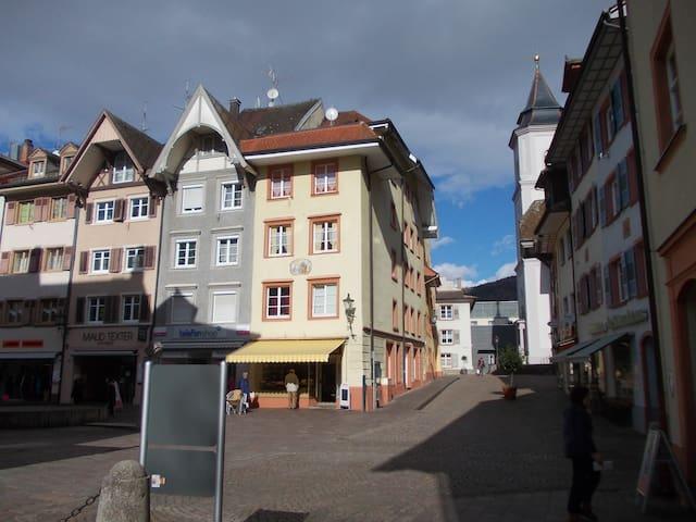 1Zi. Whg. Waldshut Altstadt  2OG H - Waldshut-Tiengen - Casa