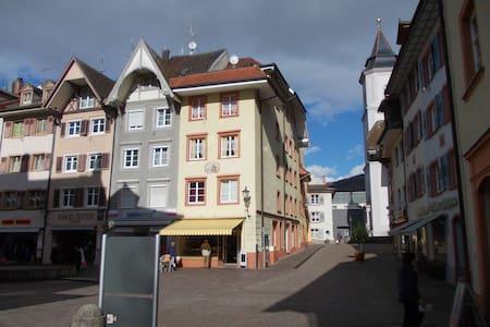 1Zi. Whg. Waldshut Altstadt  2OG H - Waldshut-Tiengen - Rumah