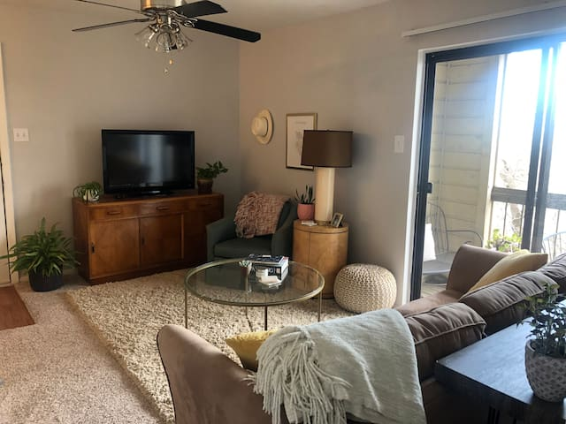 Spacious South 1st St Apartment w/ downtown view