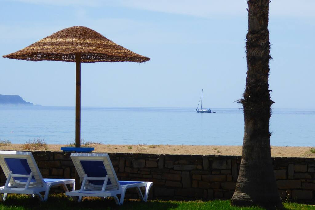garden & beach