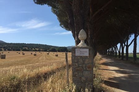 Farm in Maremma Park 4 km from the sea of Talamone - Talamone - Byt