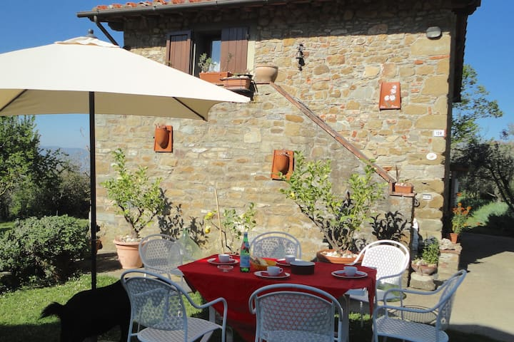 Farmhouse in Castelfranco di Sopra with Swimming Pool