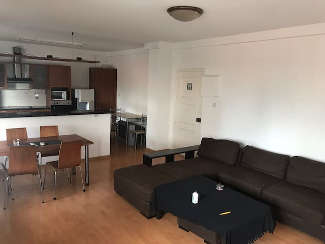 Big 1 Bedroom Apartment in Nicosia Center