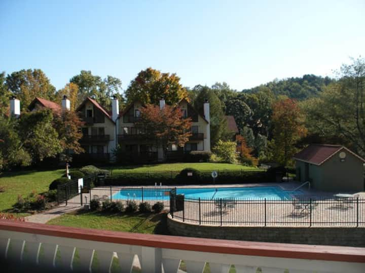 MOUNTAIN RESORT CONDO - HELEN GA