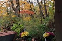 Outdoor hot tub, fall colors, romantic