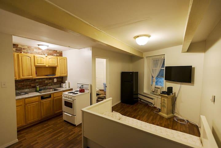 1 bedroom apartment in DUMBO!