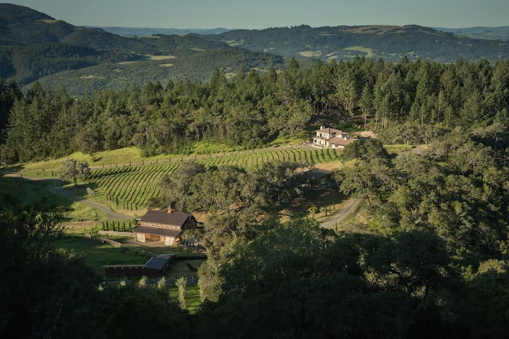 Villa on 258 acres in Sonoma Wine Country - サンタローザ - 別荘