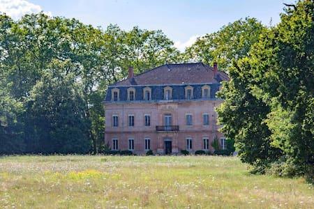 Chateau JAC : Stunning 19th century chateau - Saint-Élix-le-Château - บ้านพักตากอากาศ