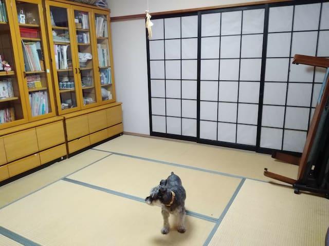 Free pick-up/Kimono/Sushi party! Cozy tourist base