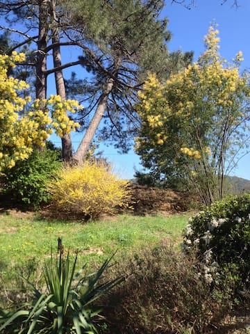 Entrée du mas au printemps