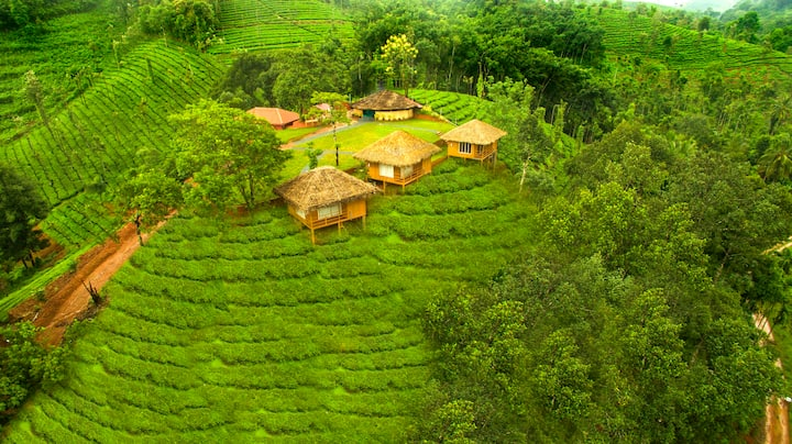 Deluxe Cottage_Wayanad