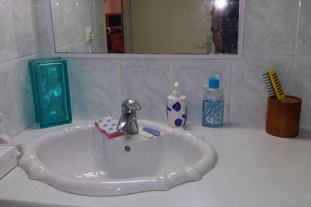 Salle de bain avec douche et WC.