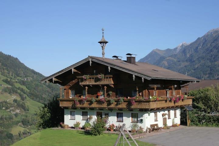 Gemütliches Apartment in Embach, Österreich nahe Skigebiet