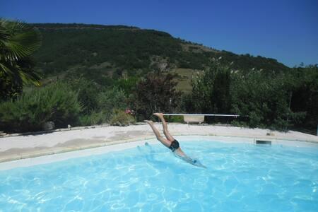 Les cigales en Ardèche méridionale
