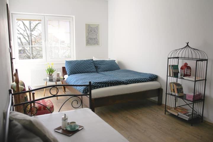 Spacious room/studio in peaceful location