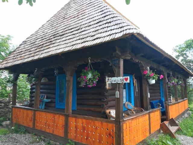 Casa cu Dor Breb, Maramureș