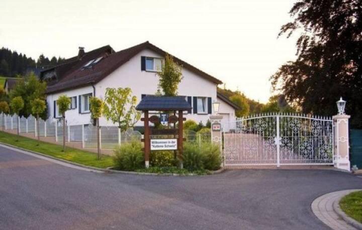 Ferienhaus Eifelhöhe, herrliche Lage &Außenanlagen