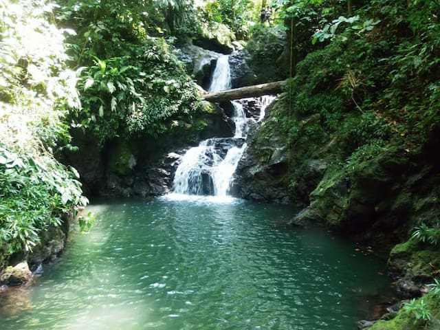 Cascada 4 encanto.