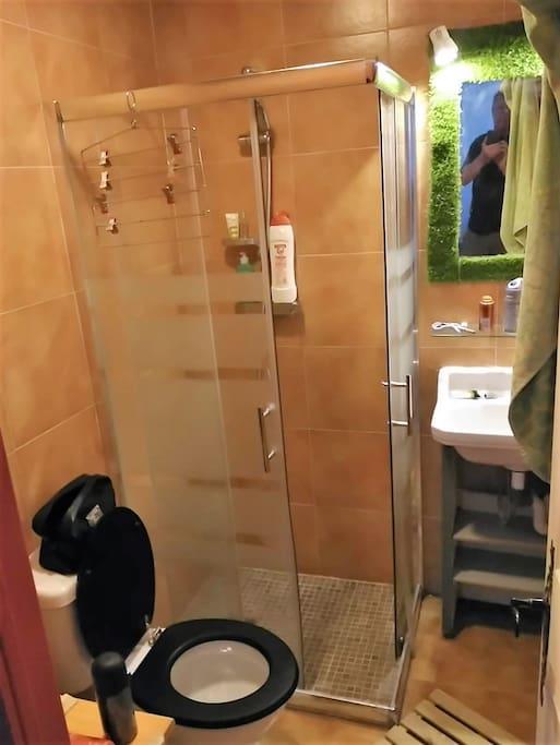 el cuarto de baño completa de la habitacion 2A
