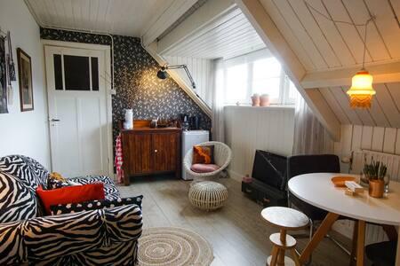 Cozy 'Dutch Style' Loft in Hilversum