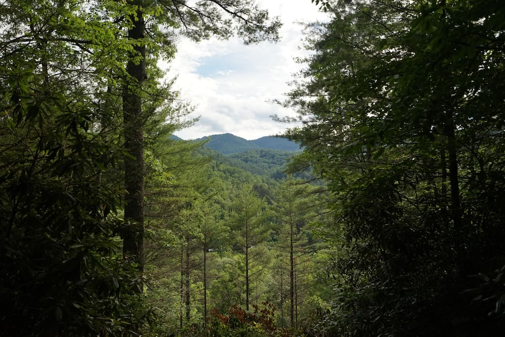 Western View into Pisgah National Forest