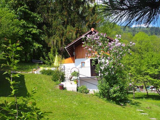P'tite maison avec jardin à la montagne