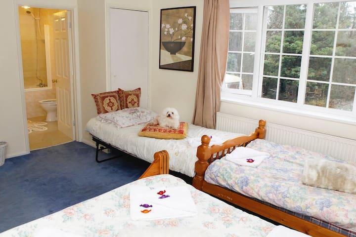 Room Sleeps 5, including children