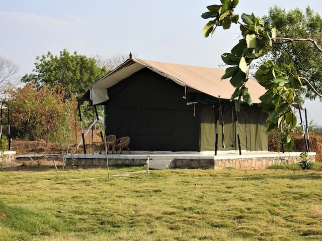 Peaceful stay near Tadoba National Park @ Chimur