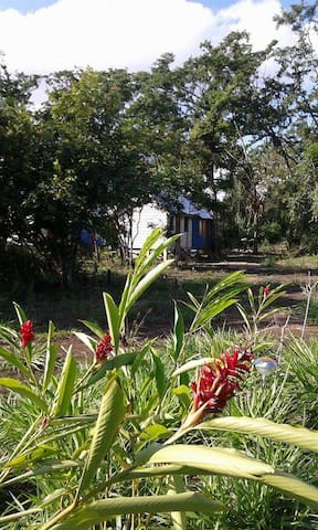Belmopan Tiny House Chalet - lovely nature house! - Belmopan - Casa de campo