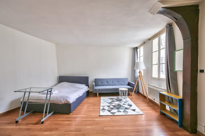 Fantastic Flat Right Next To Louvre Museum !