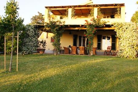 Casa con terrazza - Manciano