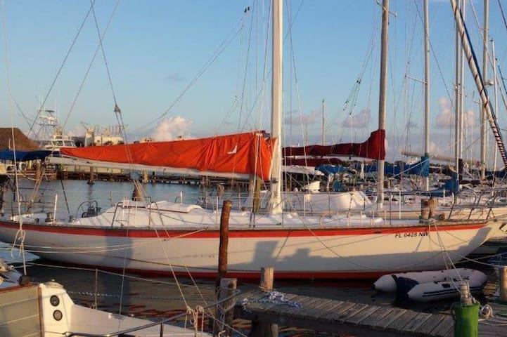 Tao - Cancun - Barca