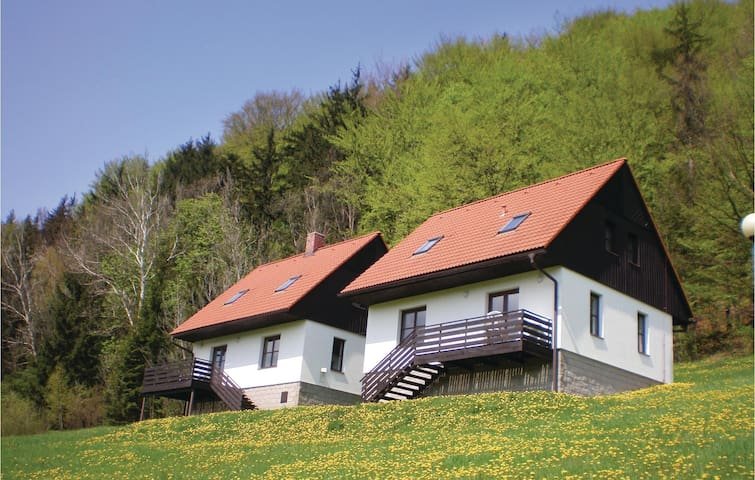 Holiday cottage with 3 bedrooms on 90 m² in Starkov