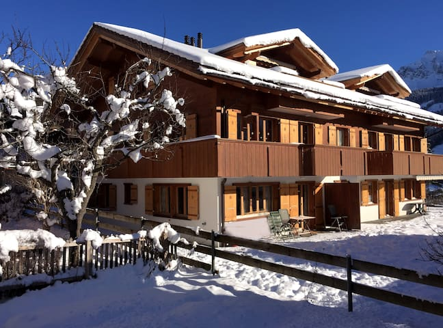 Alpine Retreat, Adelboden - Adelboden