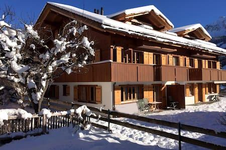 Alpine Retreat, Adelboden - Adelboden - Huoneisto