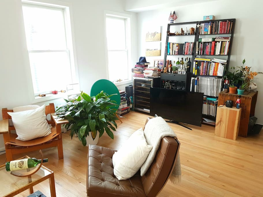 living room with tv, books,  magazines, plants, comfy chairs... everything you need to relax!