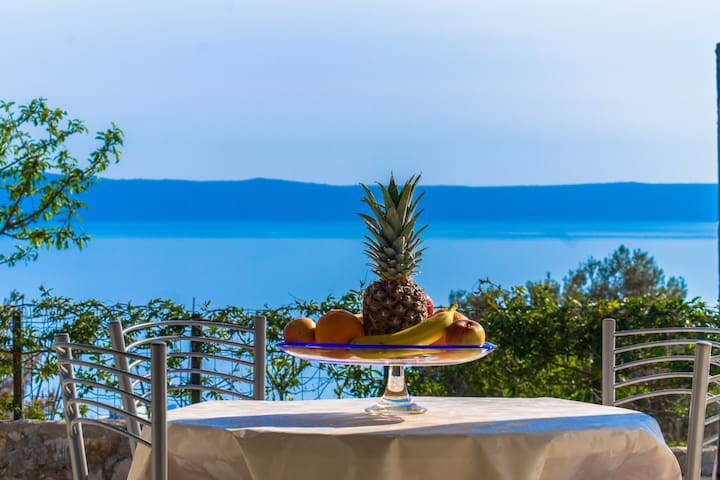 Direct view at sea & mountain apartment MAMARIJB - Makarska - Apartment