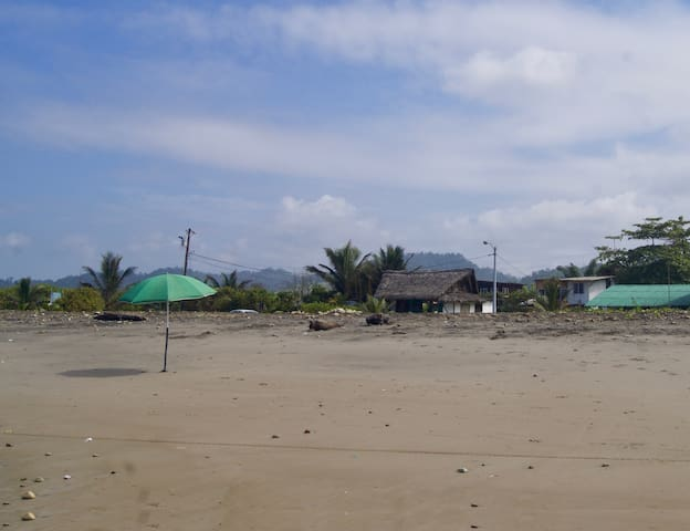 El Mirador: Oceanview w Private Kitchenette & Pool