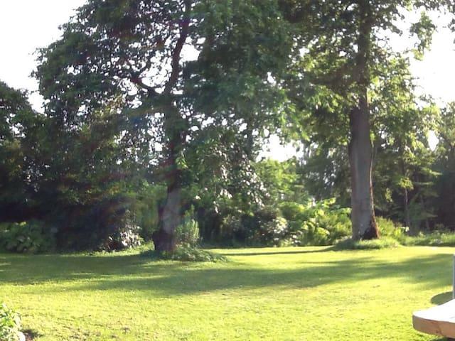 Nyrenoveret lejlighed i smuk natur - Ejstrupholm - Haus