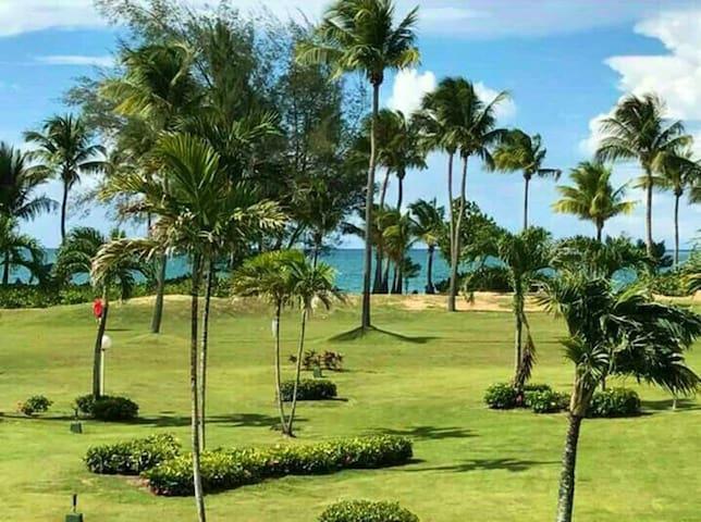 Seaside Paradise Ocean Front Condo in Casa Del Mar