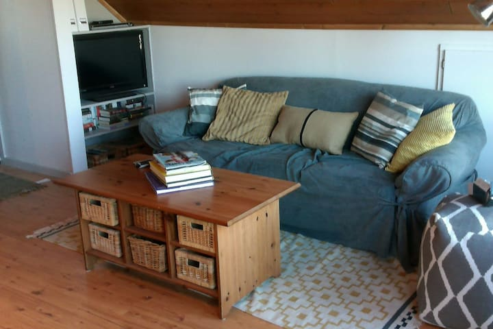 Pull out sofa and television