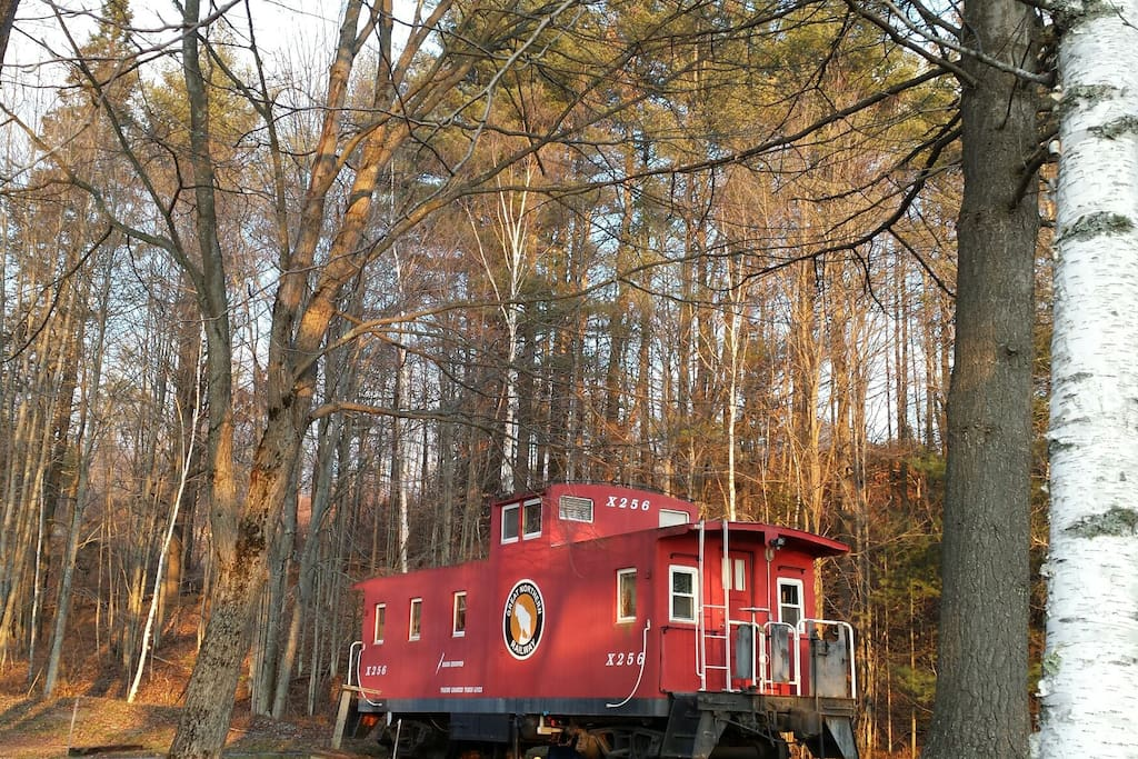 Caboose in the Clearing