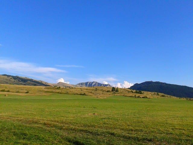 Oasi estiva nel parco Velino Sirente - Ovindoli